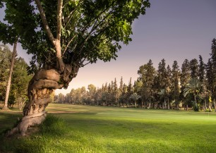 Royal Golf Marrakech<span class='vzdalenost'>(7 km od hotelu)</span>
